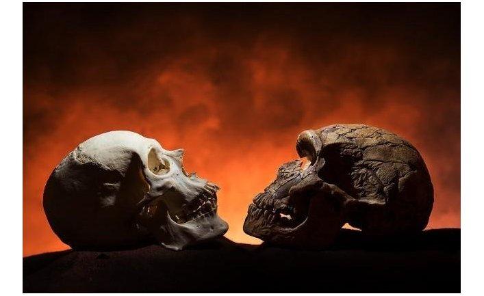 Каковы доказательства эволюции?