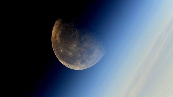 Биолог рассказал о сложностях выращивания растений на Луне