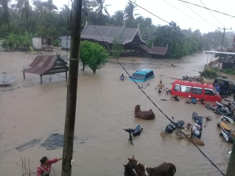Наводнение на Сулавеси (Индонезия)