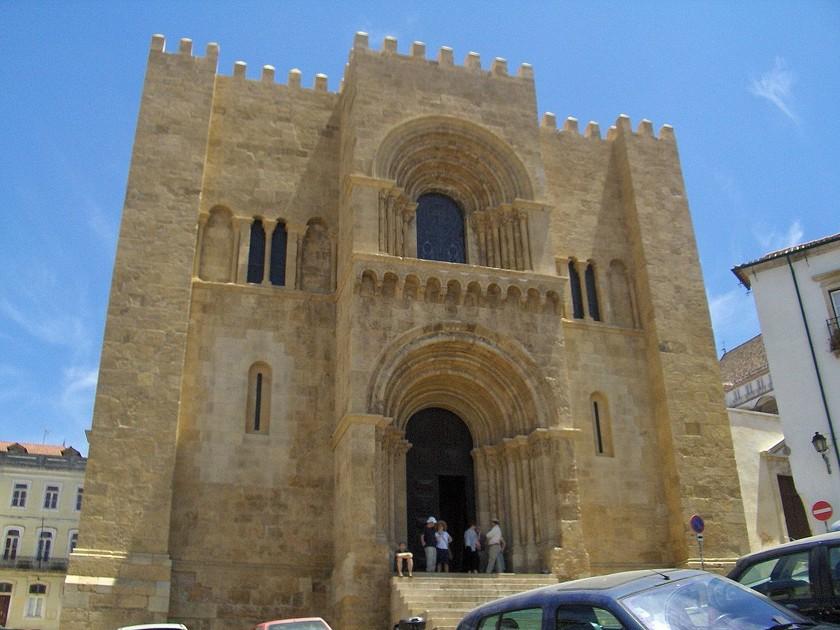 В древней церкви обнаружили неизвестный науке грибок