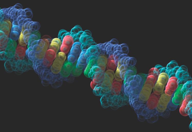Создан компьютер на основе ДНК, который можно перепрограммировать Dna-750x515