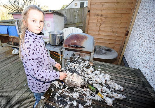 Британские выживальщики готовятся к солнечной вспышке-убийце