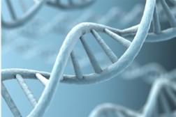Ученые нашли в генах каждого человека 400 мутаций