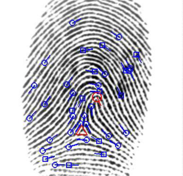 Отпечатки пальцев со временем меняются