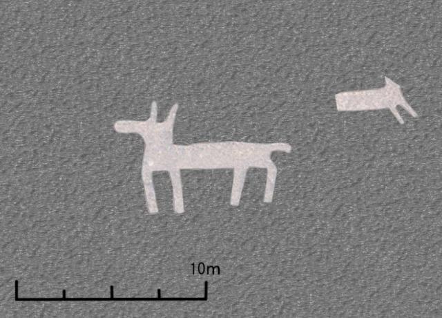 На плато Наска обнаружены новые геоглифы