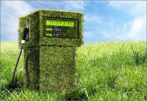 Биотопливо более вредно для экологии и человечества, чем бензин CVAVR AVR CodeVision cvavr.ru