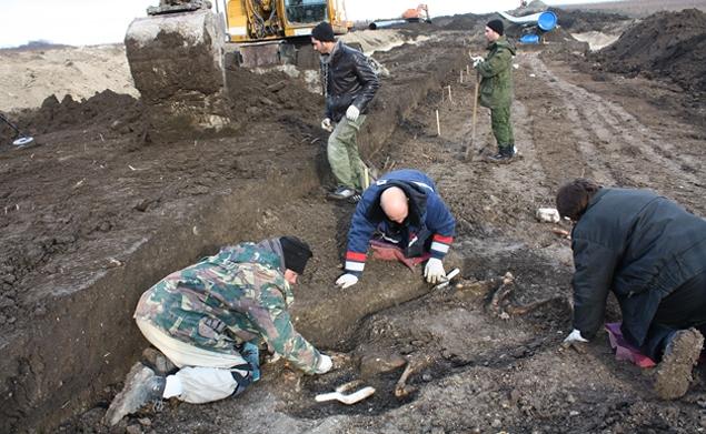 Средневековое кладбище лошадей нашли под Новороссийском CVAVR AVR CodeVision cvavr.ru