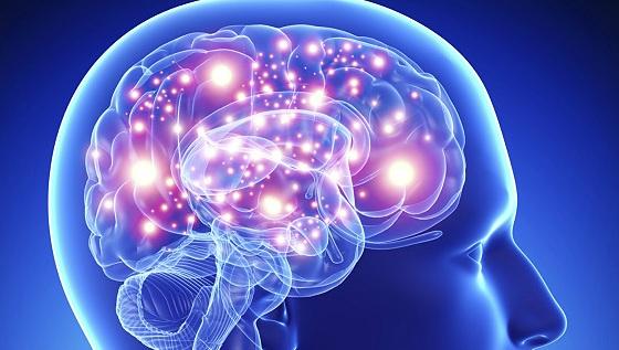 Многие психические заболевания происходят из одних и тех же участков мозга CVAVR AVR CodeVision cvavr.ru