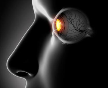 Для чего и как проверяют глазное дно?