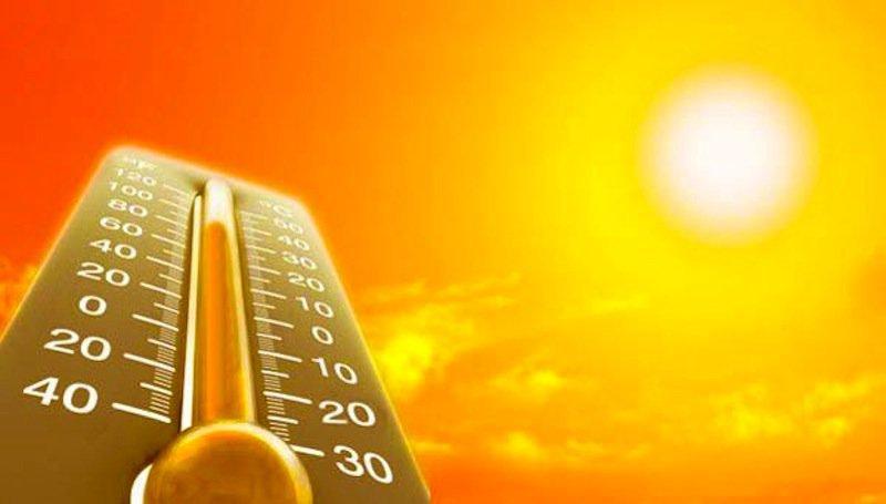 скачать торрент жара