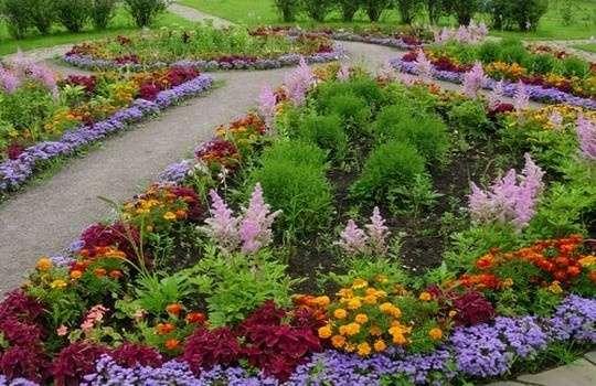 Цветы для зимнего сада в частном доме фото