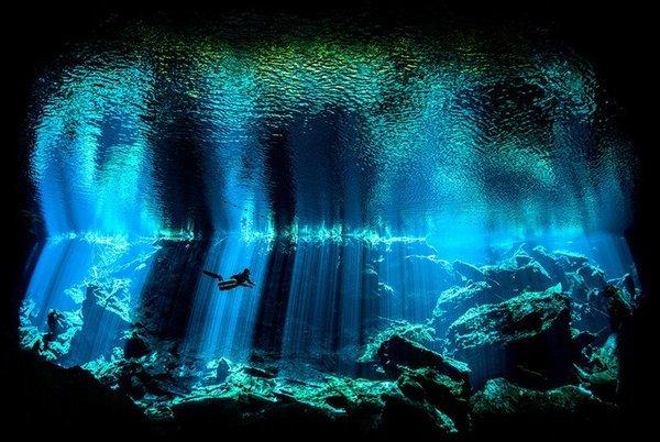 В океанах существуют пресноводные