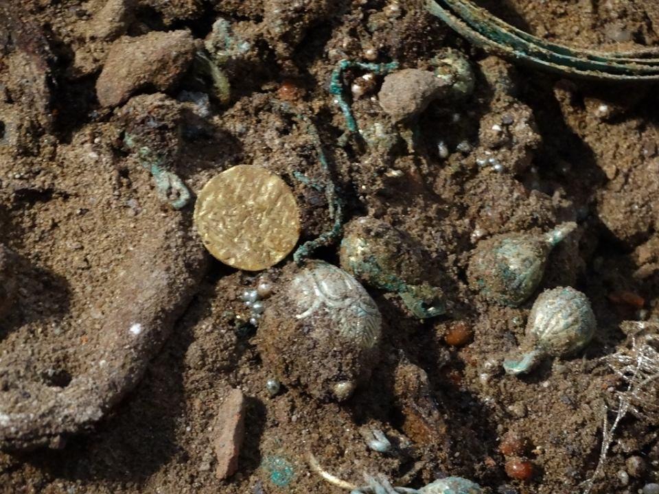 В Польше нашли большой клад золотых монет
