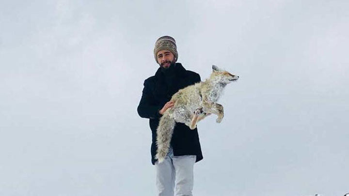 В Турции так холодно, что животные замерзают!