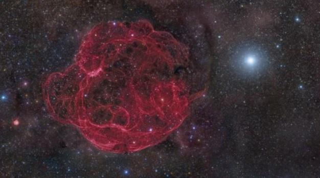 Вспышка сверхновой уничтожила крупных животных миллионы лет назад