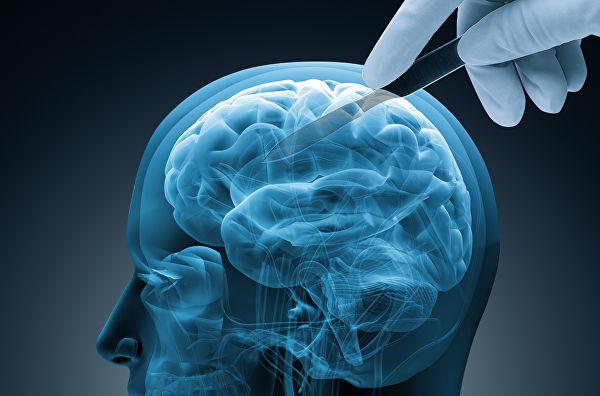 Ученые научились стирать память 1552430248_0_0_1023_676_600x0_80_0_0_a6f7fe2604f29