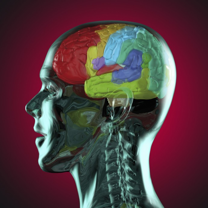 Что такое человеческая память? Ace71b0c
