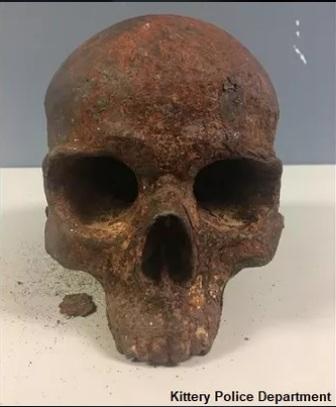 В США на пляже нашли странный металлический череп