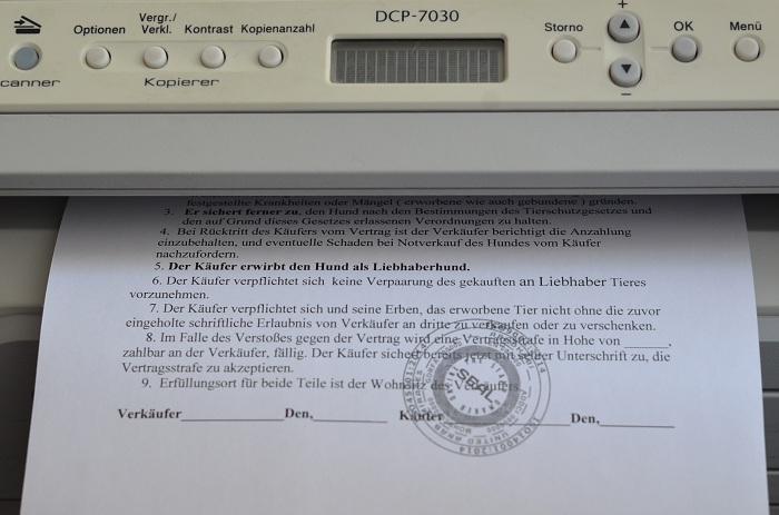 DSC-0079