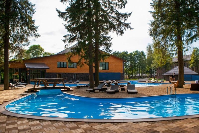 Открытый бассейн в тени деревьев