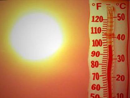 В течение ближайших суток жара в регионе усилится