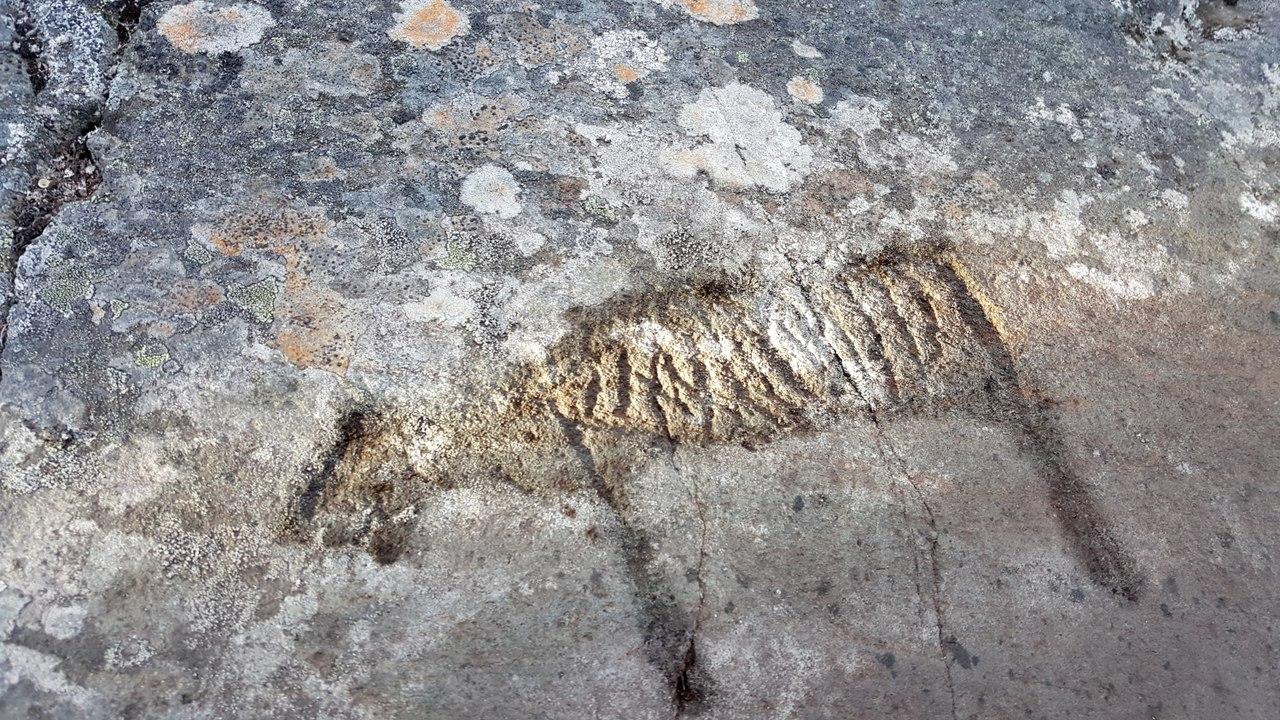каменном в наскальные веки рисунки