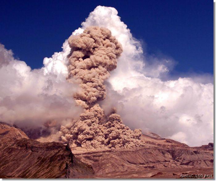 Камчатский вулкан Шивелуч поднял столб пепла на 4,5 км