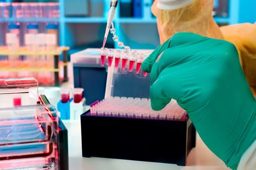 molecular biology and gene technology assignment