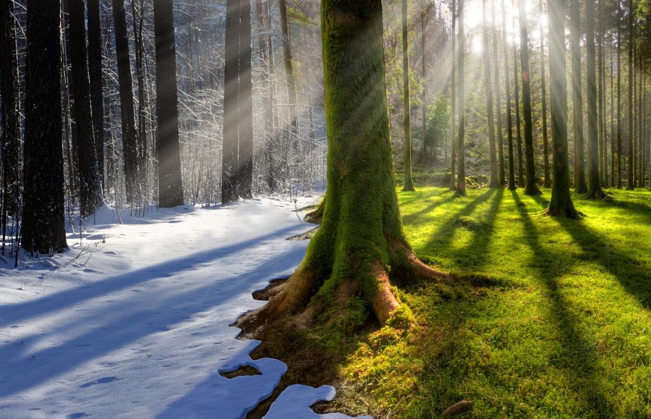 изменение климата на земли: