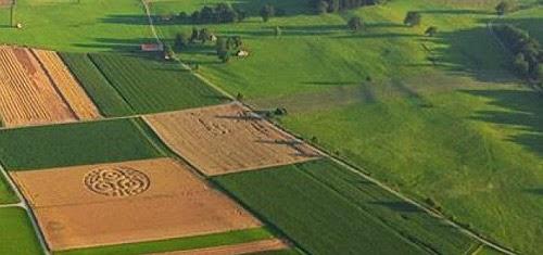 Рисунок на поле обнаружен в Германии CVAVR AVR CodeVision cvavr.ru