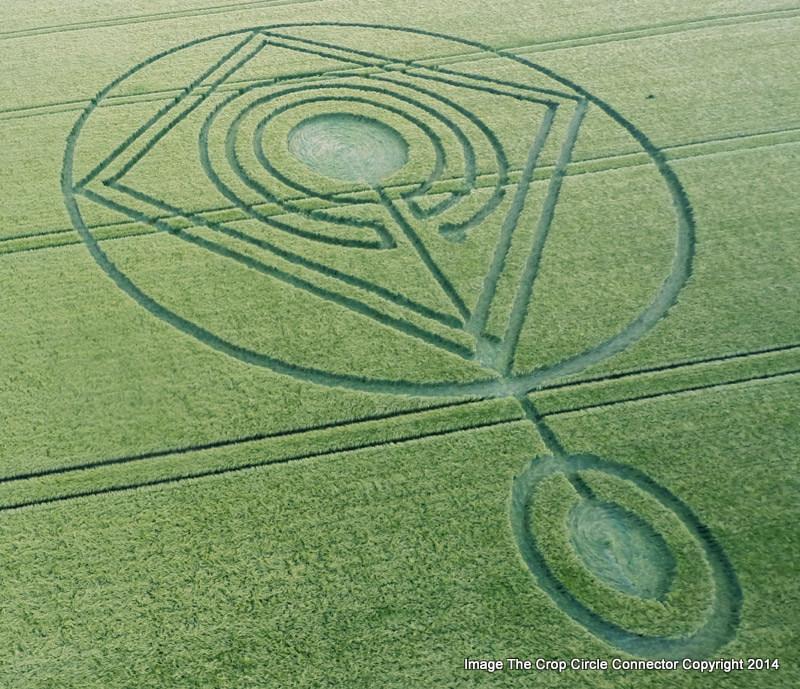 Рисунок на поле в Дорсете, Англия - Подробные фото CVAVR AVR CodeVision cvavr.ru