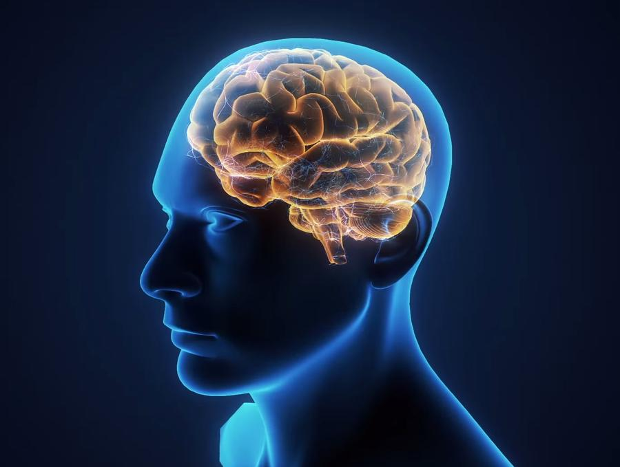 mental illness paper mind brain This paper discusses alternate treatment as well as recommendations for future mental health nursing practices in the movie, a beautiful mind, the protagonist, demonstrates the classical symptoms of paranoid schizophrenia.