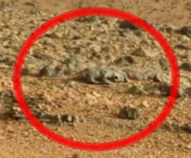 Марсианские артефакты