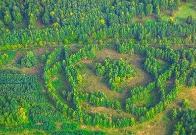http://earth-chronicles.ru/Publications_9/10/1/zavtr4a14.jpg