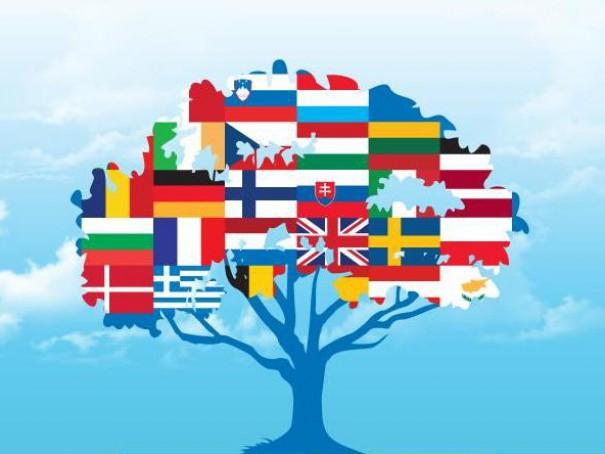 Разнообразие языков мира реферат 625