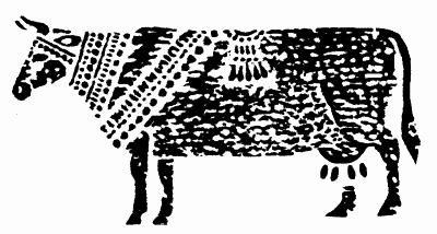 Разводившие коров доисторические европейцы страдали от непереносимости молока CVAVR AVR CodeVision cvavr.ru