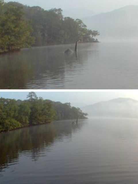 В Английском озере сфотографировали динозавра CVAVR AVR CodeVision cvavr.ru