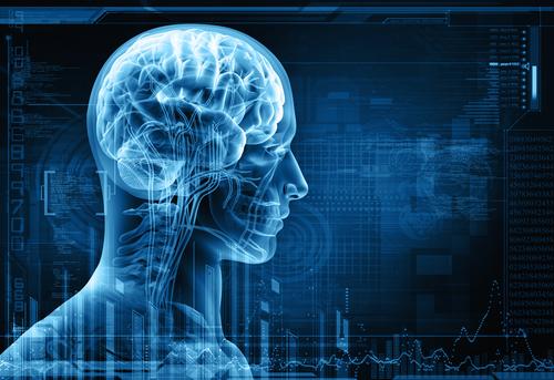 Мозг 40-летнего человека по размерам сравним с мозгом 7-летнего ребенка CVAVR AVR CodeVision cvavr.ru