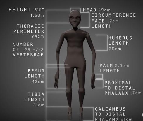 Ученые исследуют мумию пришельца изПеру Сегодня в17:54