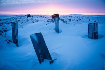 Что нацисты искали в советской Арктике S53466314