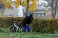 Ученые выяснили, как вредит женщине выход мужа на пенсию CVAVR AVR CodeVision cvavr.ru