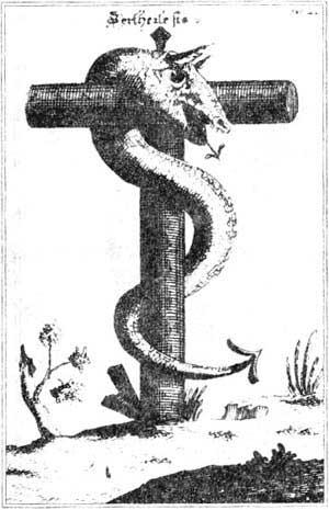Саратовские змеечерви - ответ чупакабре